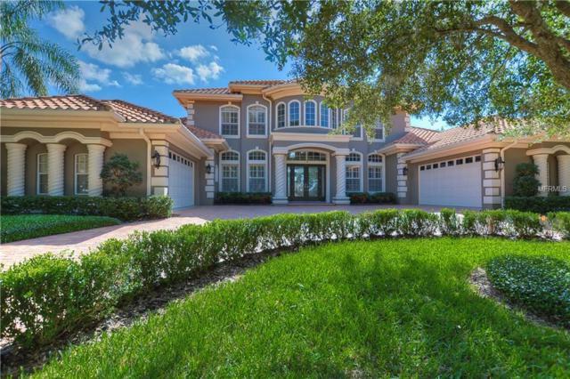 10534 Pontofino Circle, Trinity, FL 34655 (MLS #T3142089) :: Delgado Home Team at Keller Williams