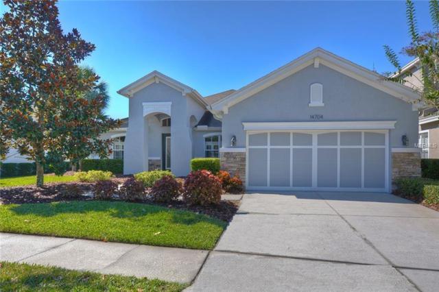 14704 Tudor Chase Drive, Tampa, FL 33626 (MLS #T3142097) :: SANDROC Group