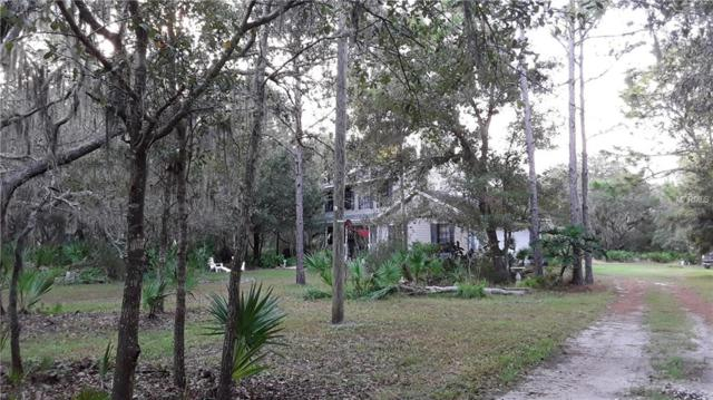 12622 Hayes Clan Road, Riverview, FL 33578 (MLS #T3142154) :: The Duncan Duo Team