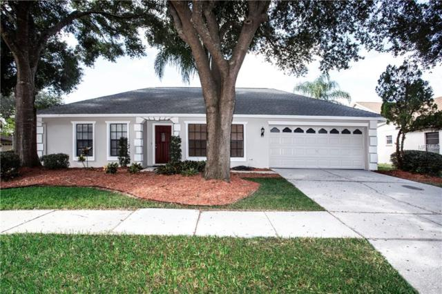 18302 Cypress Stand Circle, Tampa, FL 33647 (MLS #T3142181) :: The Duncan Duo Team