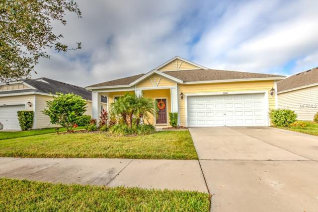 11566 Balintore Drive, Riverview, FL 33579 (MLS #T3142225) :: The Duncan Duo Team