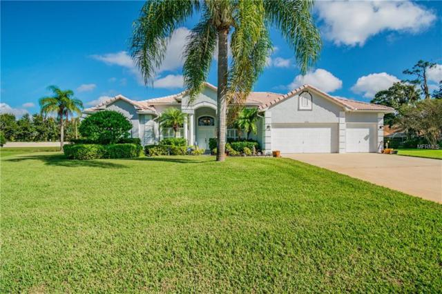 3902 Hidden Spring Place, Valrico, FL 33596 (MLS #T3142250) :: Griffin Group