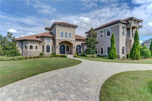 11207 Sunny Delight Court, Odessa, FL 33556 (MLS #T3142254) :: Griffin Group