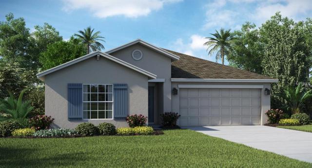 208 Taft Drive, Davenport, FL 33837 (MLS #T3142277) :: RE/MAX Realtec Group
