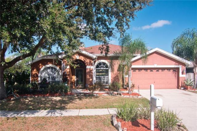 10110 Tantara Court, Riverview, FL 33578 (MLS #T3142349) :: Zarghami Group