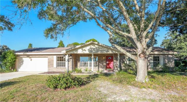 2213 Laurel Oak Drive, Valrico, FL 33596 (MLS #T3142375) :: The Duncan Duo Team