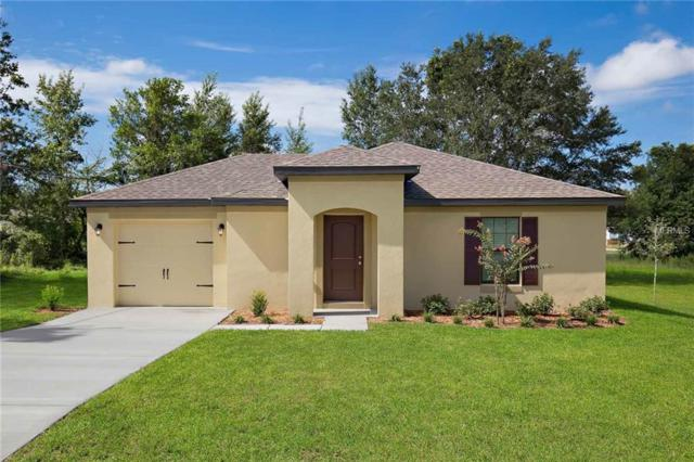 27016 Mary Avenue, Brooksville, FL 34602 (MLS #T3142417) :: Zarghami Group