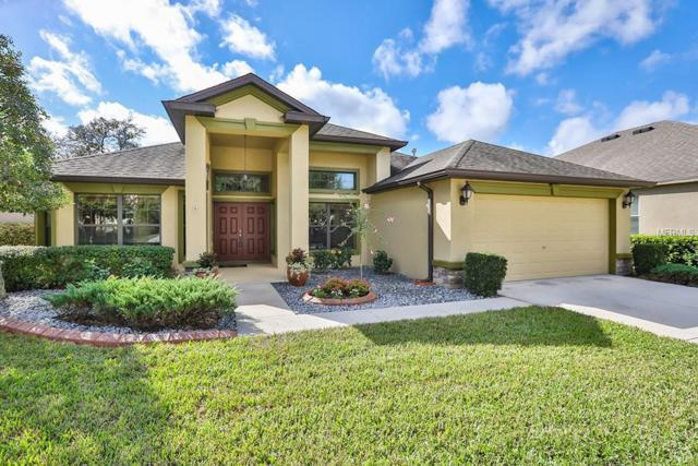 15620 Starling Water Drive, Lithia, FL 33547 (MLS #T3142489) :: The Duncan Duo Team