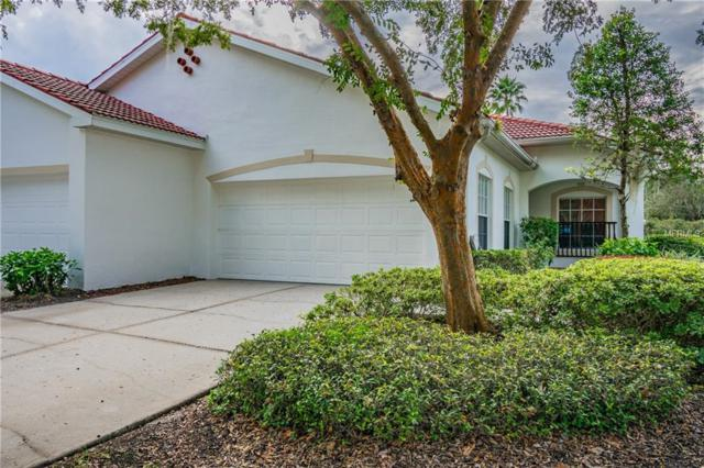 10224 Devonshire Lake Drive, Tampa, FL 33647 (MLS #T3142531) :: Team Bohannon Keller Williams, Tampa Properties