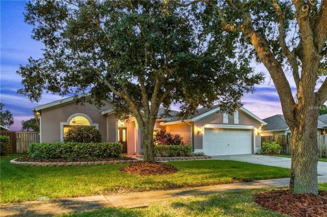 10503 Weybridge Drive, Tampa, FL 33626 (MLS #T3142560) :: The Duncan Duo Team