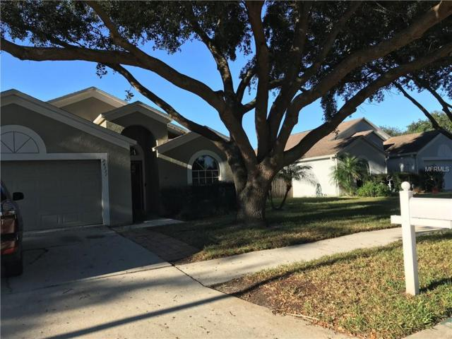 24331 Rolling View Court, Lutz, FL 33559 (MLS #T3142572) :: The Duncan Duo Team
