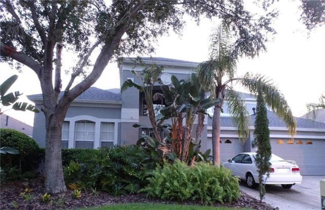 18126 Pheasant Walk Drive, Tampa, FL 33647 (MLS #T3142605) :: Team Bohannon Keller Williams, Tampa Properties
