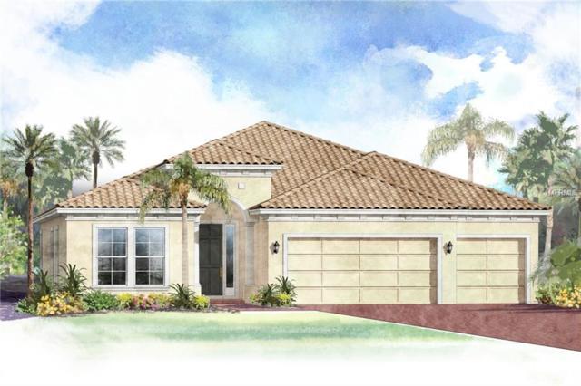 16629 5TH Avenue E, Bradenton, FL 34212 (MLS #T3142631) :: Premium Properties Real Estate Services