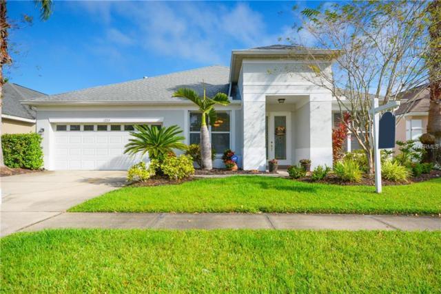 12715 Tar Flower Drive, Tampa, FL 33626 (MLS #T3142651) :: SANDROC Group