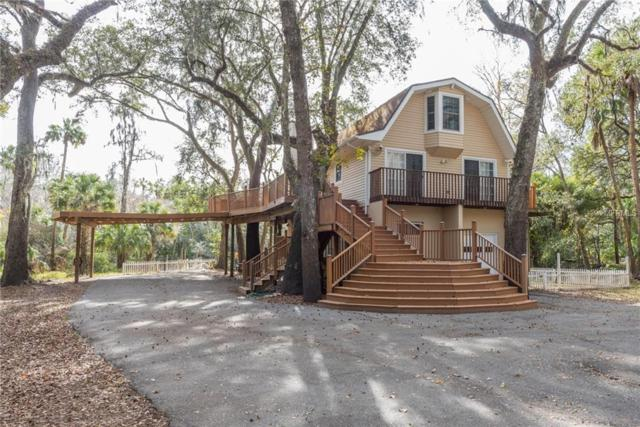 4502 Coconut Cove Place, Valrico, FL 33596 (MLS #T3142656) :: Griffin Group
