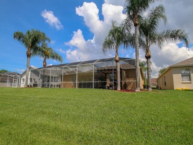 12431 Bristol Commons Circle, Tampa, FL 33626 (MLS #T3142660) :: The Duncan Duo Team