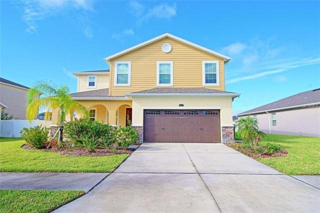 5377 Suncatcher Drive, Wesley Chapel, FL 33545 (MLS #T3142667) :: The Duncan Duo Team