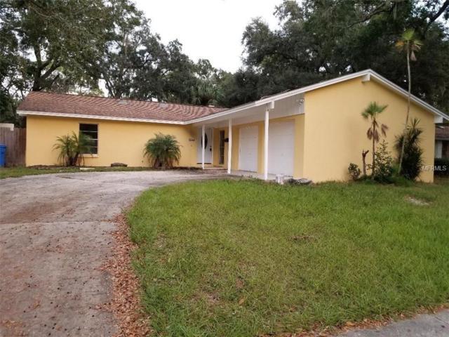6607 Webb Road, Tampa, FL 33615 (MLS #T3142686) :: Jeff Borham & Associates at Keller Williams Realty