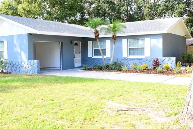 506 Limetree Drive, Oldsmar, FL 34677 (MLS #T3142692) :: Burwell Real Estate