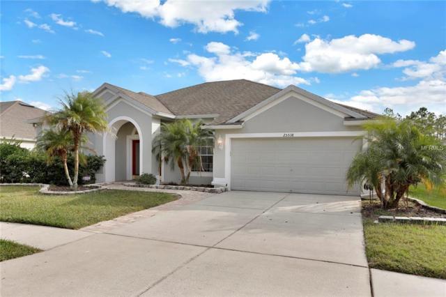25538 Aptitude Terrace, Wesley Chapel, FL 33544 (MLS #T3142746) :: The Duncan Duo Team