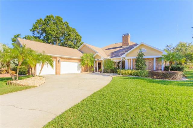 13004 Waterford Run Drive, Riverview, FL 33569 (MLS #T3142772) :: The Duncan Duo Team