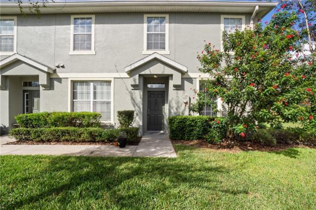 6784 Breezy Palm Drive, Riverview, FL 33578 (MLS #T3142819) :: White Sands Realty Group