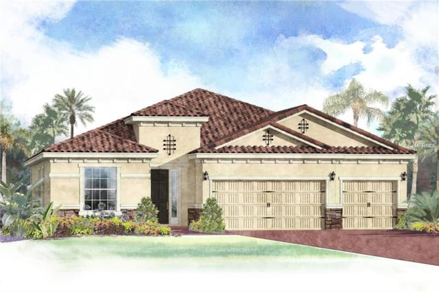 515 167TH Boulevard E, Bradenton, FL 34212 (MLS #T3142867) :: Premium Properties Real Estate Services