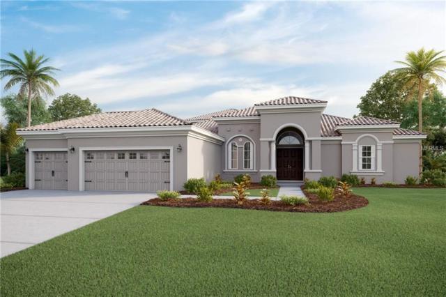 310 167TH Boulevard E, Bradenton, FL 34212 (MLS #T3142872) :: Premium Properties Real Estate Services