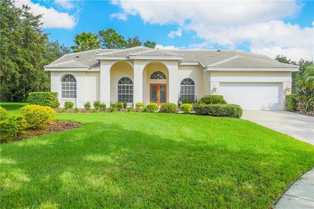 9103 Highland Ridge Way, Tampa, FL 33647 (MLS #T3142885) :: Andrew Cherry & Company