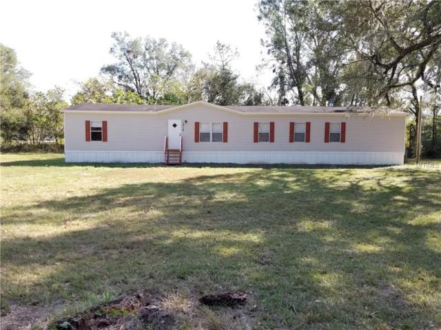 1012 Cardwell Street, Brooksville, FL 34602 (MLS #T3142958) :: Burwell Real Estate