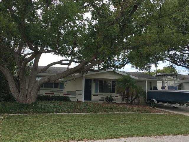 13233 Lisa Drive, Hudson, FL 34667 (MLS #T3142973) :: Jeff Borham & Associates at Keller Williams Realty