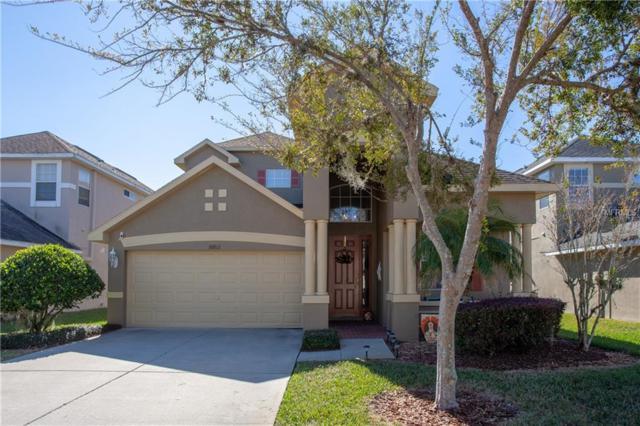 30812 Pumpkin Ridge Drive, Wesley Chapel, FL 33543 (MLS #T3143017) :: Jeff Borham & Associates at Keller Williams Realty