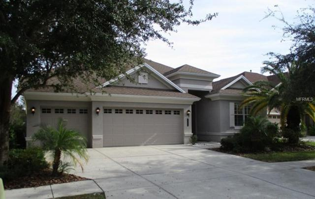 20423 Walnut Grove Lane, Tampa, FL 33647 (MLS #T3143030) :: Team Bohannon Keller Williams, Tampa Properties