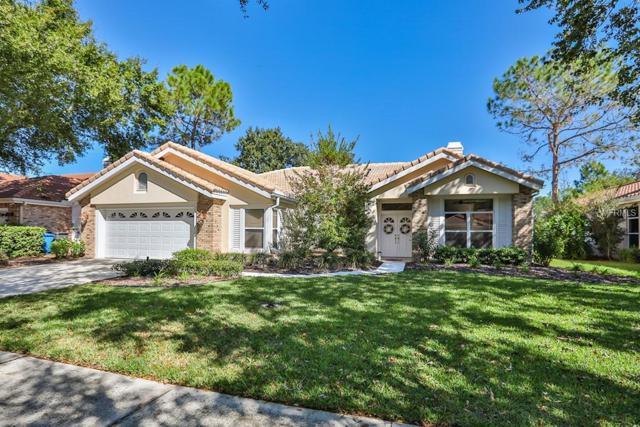 17919 Holly Brook Drive, Tampa, FL 33647 (MLS #T3143082) :: Jeff Borham & Associates at Keller Williams Realty