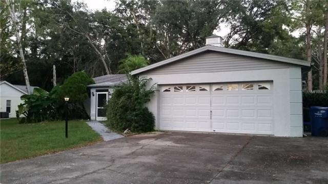 5402 Swallow Drive, Land O Lakes, FL 34639 (MLS #T3143116) :: The Duncan Duo Team