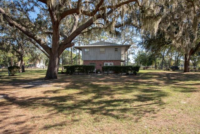 18838 Huckavalle Road, Odessa, FL 33556 (MLS #T3143137) :: Homepride Realty Services