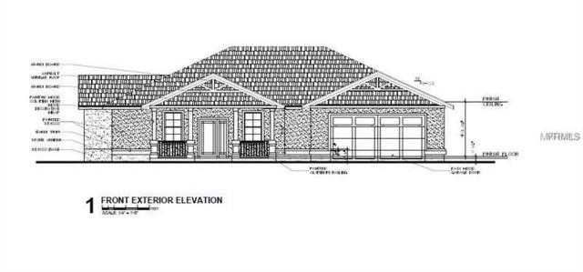 29516 Pomello Trace, Wesley Chapel, FL 33545 (MLS #T3143229) :: Team Bohannon Keller Williams, Tampa Properties