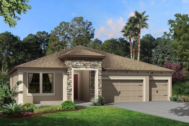 1729 Cherry Walk Road, Lutz, FL 33558 (MLS #T3143291) :: Team Bohannon Keller Williams, Tampa Properties