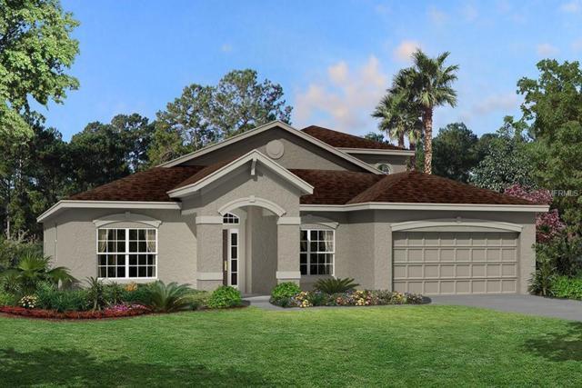 1809 Cherry Walk Road #131, Lutz, FL 33558 (MLS #T3143294) :: Team Bohannon Keller Williams, Tampa Properties