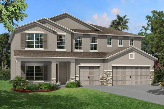1827 Cherry Walk Road #131, Lutz, FL 33558 (MLS #T3143296) :: Team Bohannon Keller Williams, Tampa Properties