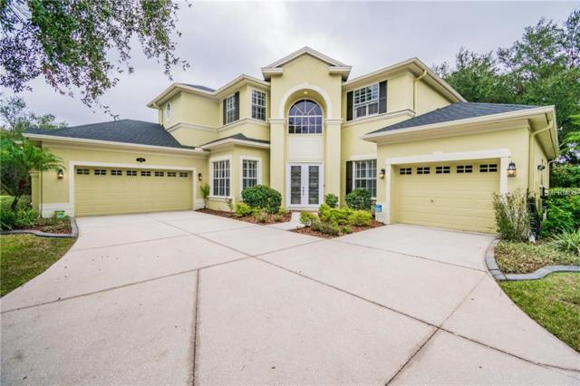 2102 Chestnut Forest Drive, Tampa, FL 33618 (MLS #T3143327) :: Medway Realty