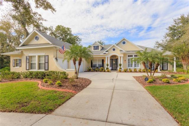 15801 Sorawater Drive, Lithia, FL 33547 (MLS #T3143374) :: Medway Realty