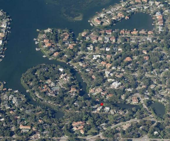 413 S Shore Crest Drive, Tampa, FL 33609 (MLS #T3143431) :: Premium Properties Real Estate Services