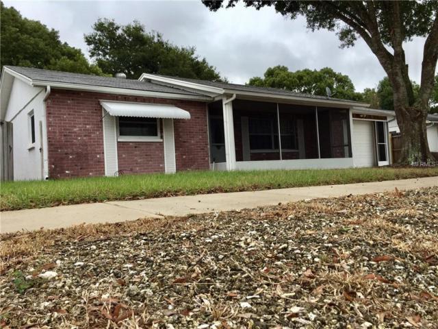 3434 Paloma Drive, Holiday, FL 34690 (MLS #T3143586) :: Team Suzy Kolaz