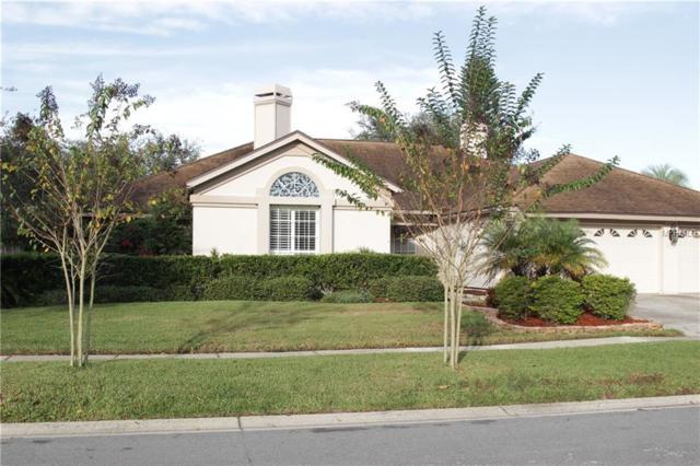 15026 Meadowlake Street, Odessa, FL 33556 (MLS #T3143592) :: Team Bohannon Keller Williams, Tampa Properties