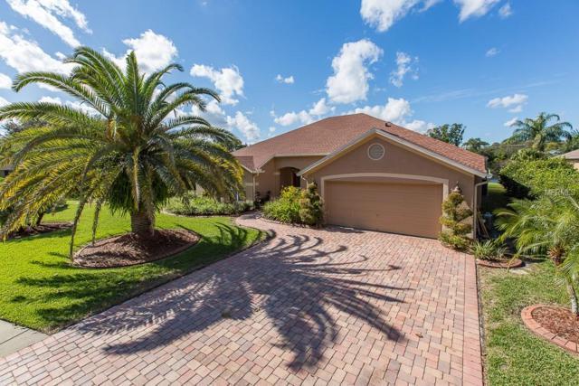17502 Isbell Lane, Odessa, FL 33556 (MLS #T3143627) :: Team Bohannon Keller Williams, Tampa Properties