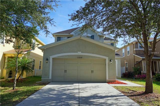 31808 Spoonflower Circle, Wesley Chapel, FL 33545 (MLS #T3143735) :: Team Bohannon Keller Williams, Tampa Properties