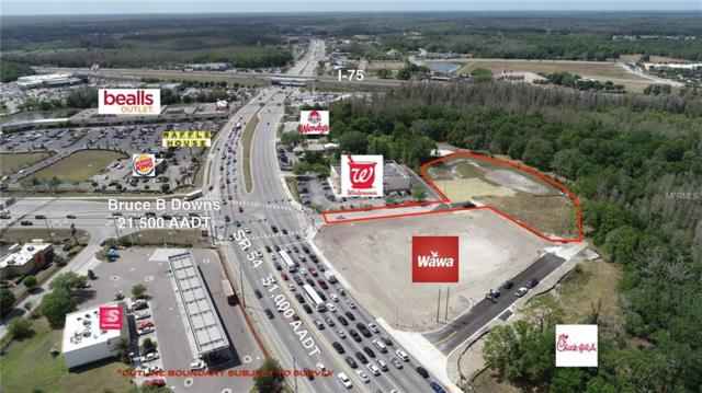 Address Not Published, Wesley Chapel, FL 33543 (MLS #T3143786) :: The Duncan Duo Team