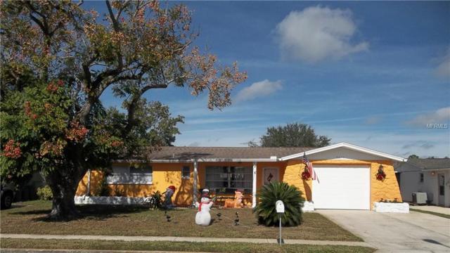 5637 Elena Drive, Holiday, FL 34690 (MLS #T3143798) :: Team Suzy Kolaz