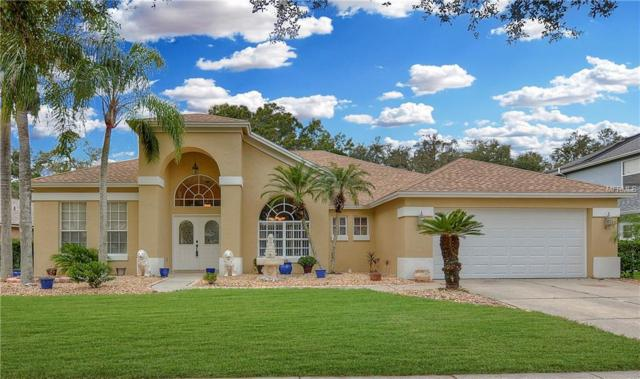 3509 Autumn Glen Drive, Valrico, FL 33596 (MLS #T3143850) :: The Brenda Wade Team